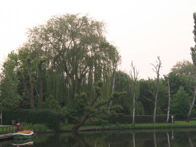 Benelux Rederij  - Gallery