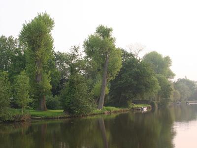 Benelux Rederij - Gent - Gallery