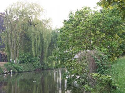 Benelux Rederij - Gent - Fotogalerij
